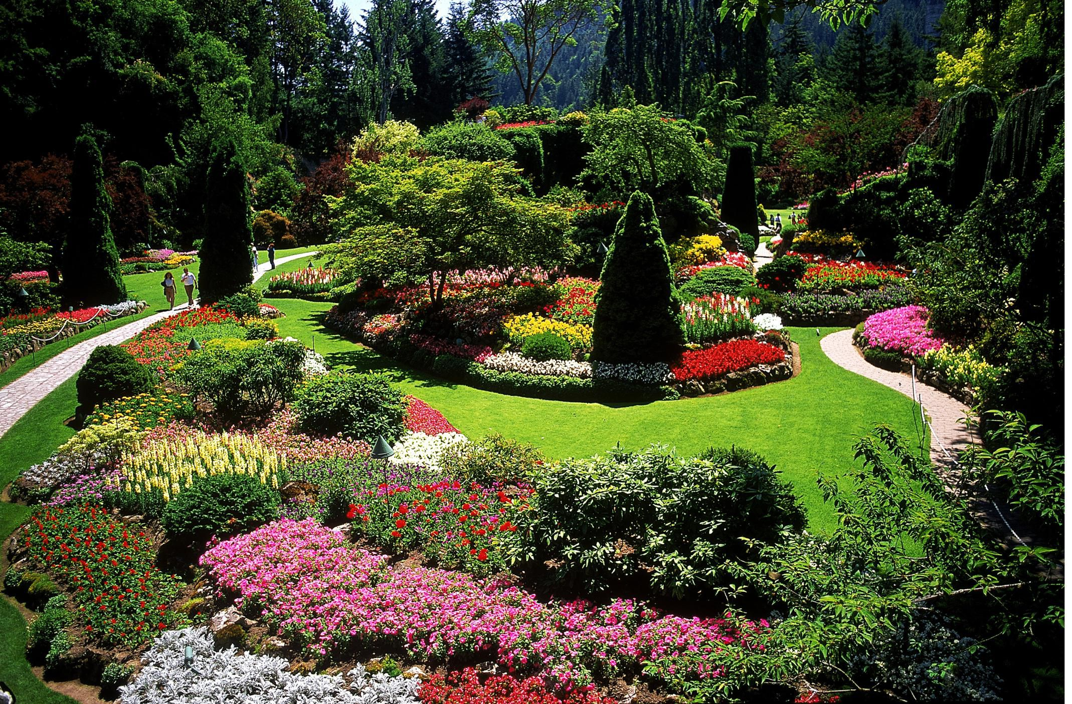 Designing a Garden With Landscape Design Principles on Landscape Garden Designs For Small Gardens id=91633