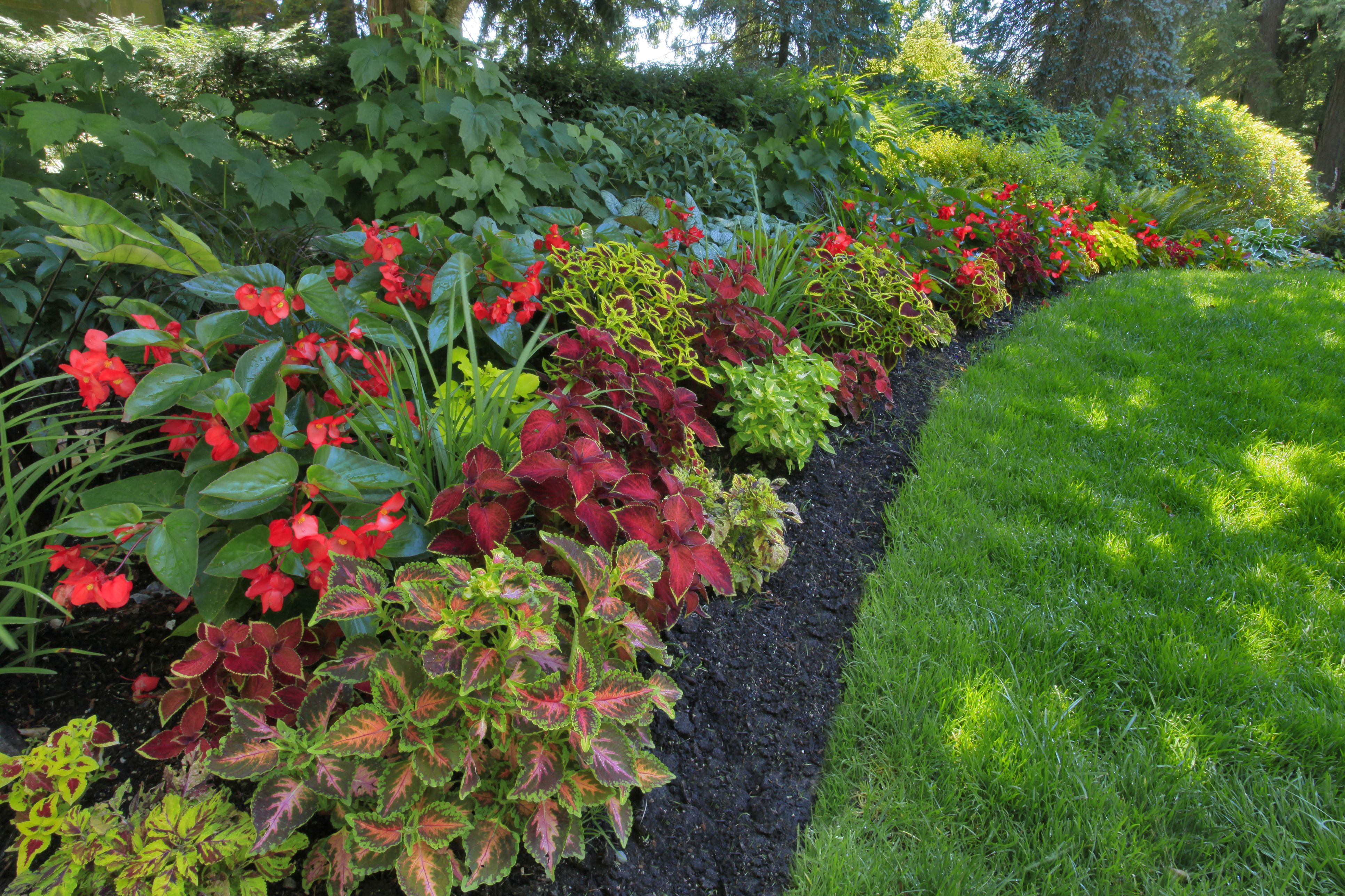 Planning Landscape for Shady Areas on Landscape Design Small Area id=45412