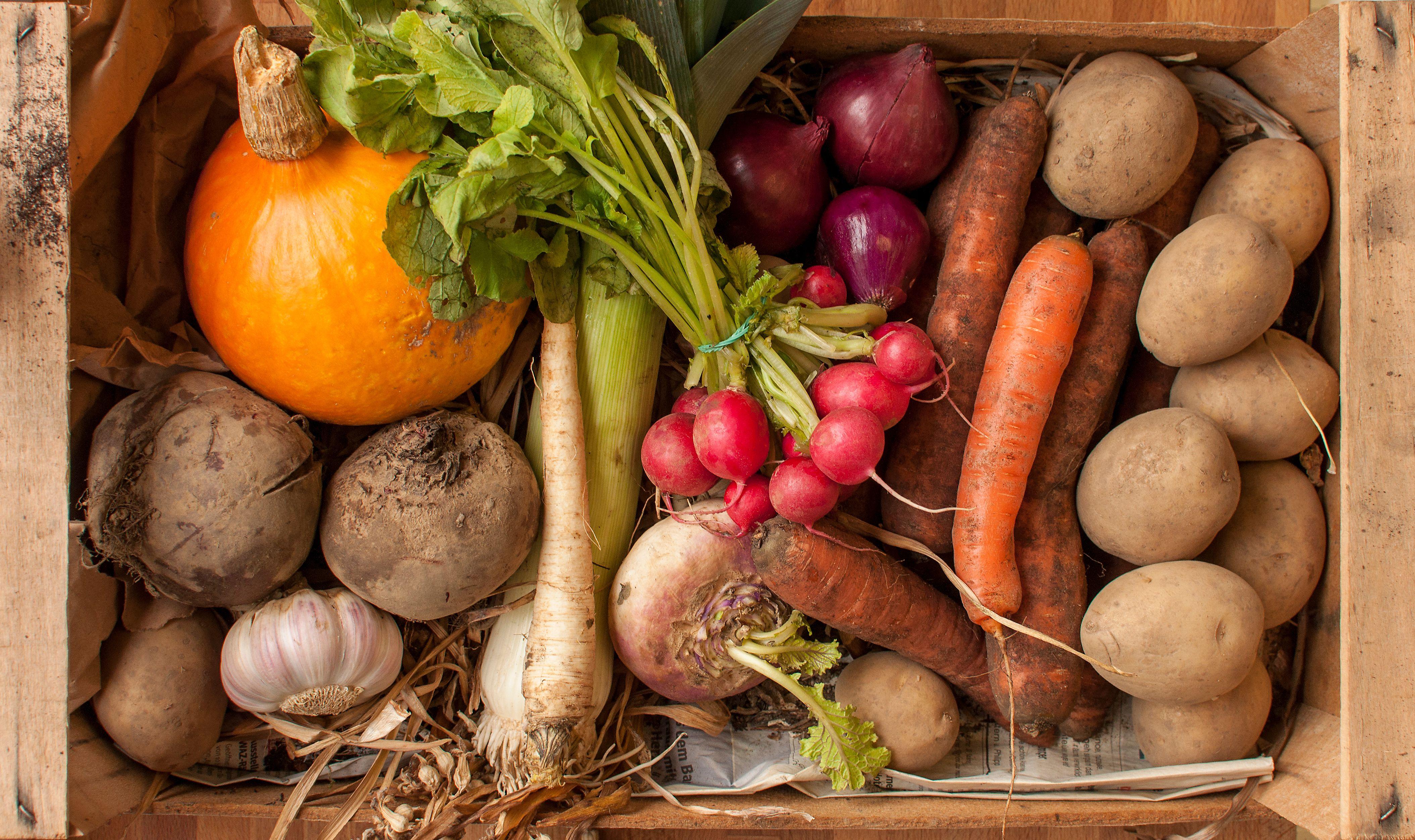 Winter Cold Storage For Vegetables
