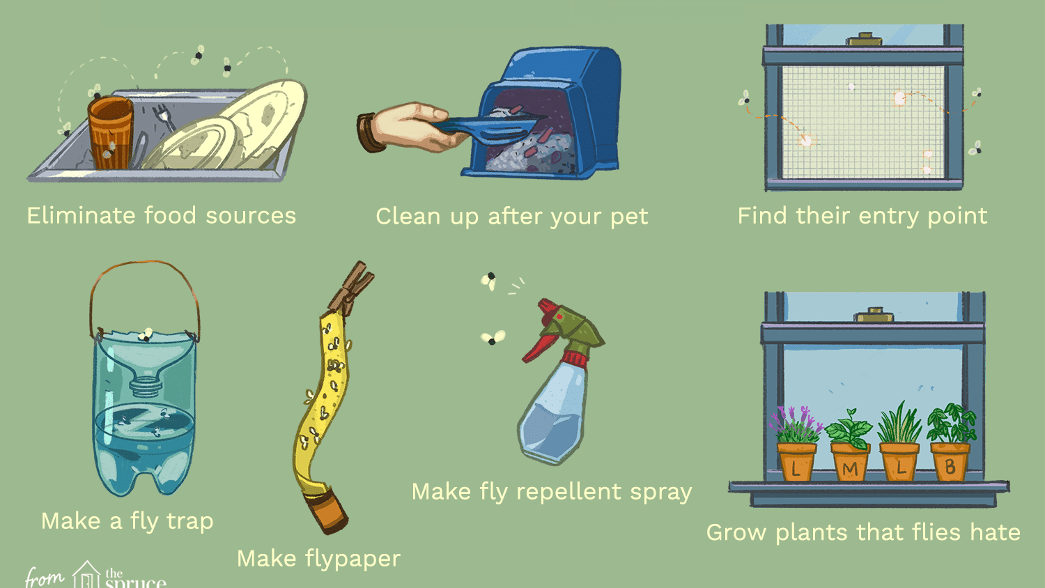 how to get rid of flies