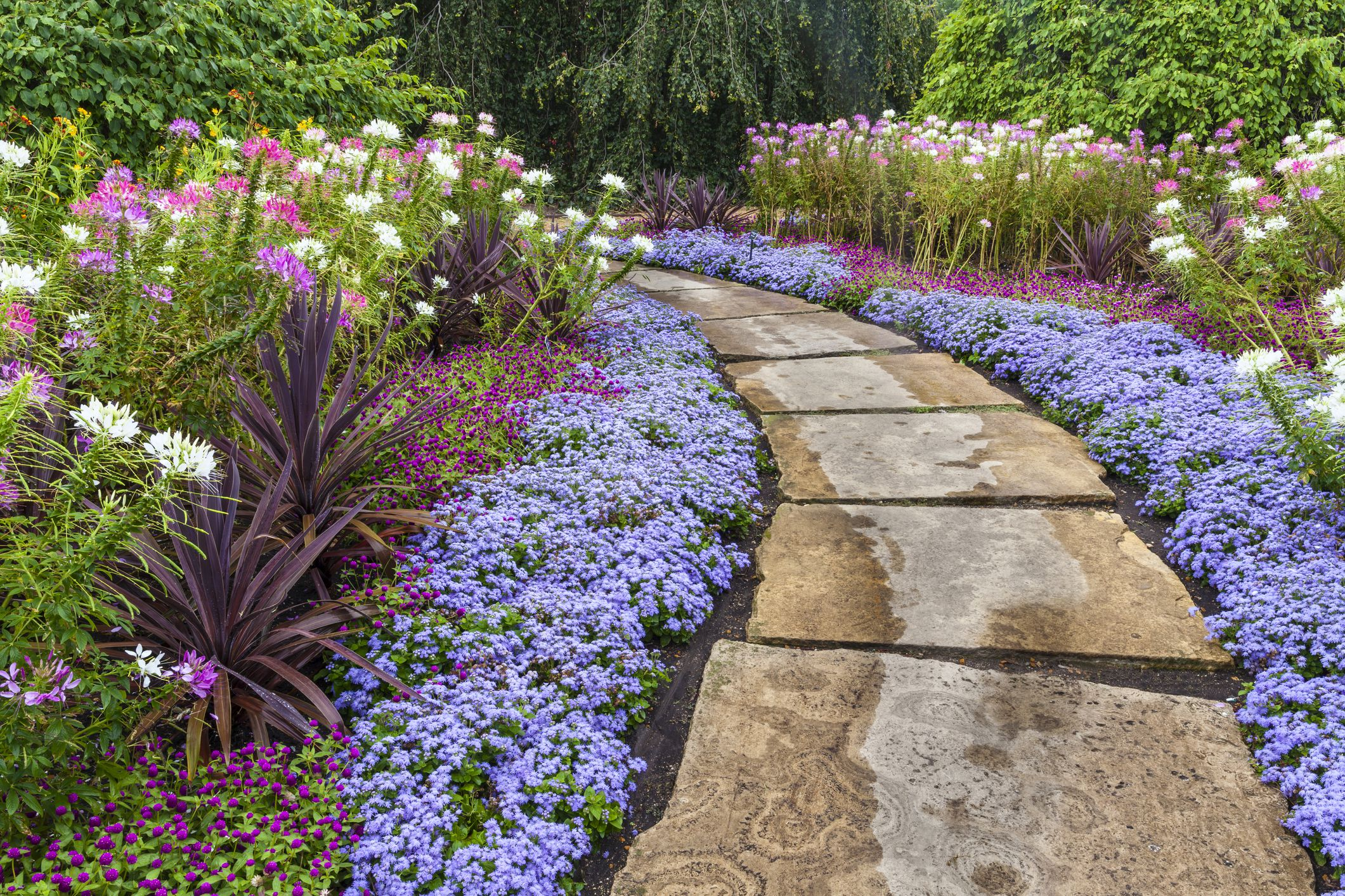 Landscaping on a Budget: 5 Easy Money-Saving Ideas on Garden Design Ideas On A Budget  id=97660