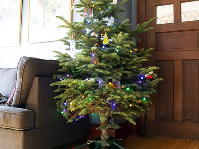 The 9 Best Christmas Tree Stands Of 2020