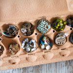8 Ideas For Jewelry Storage Organization And Display
