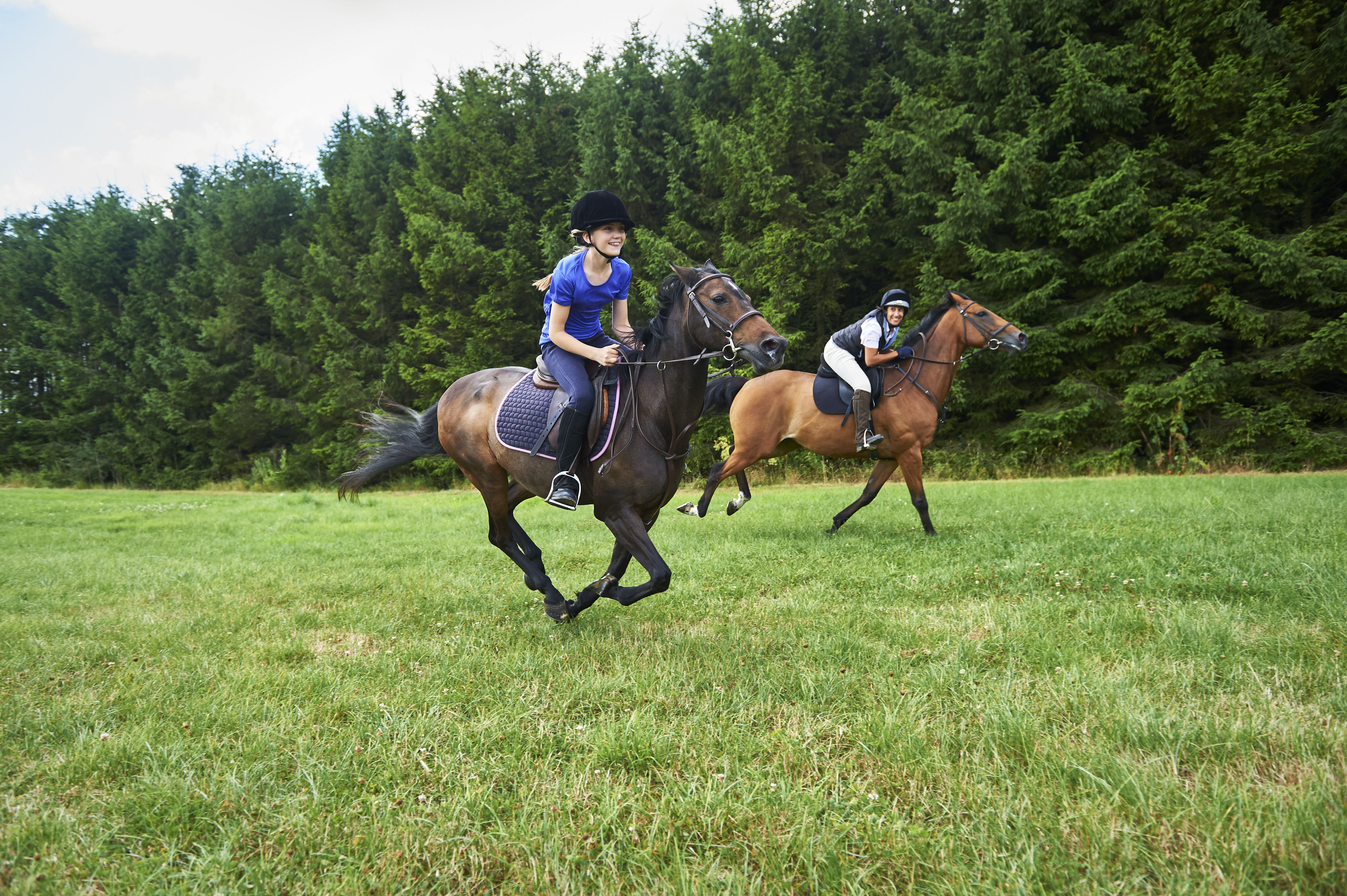 Safety Tips For Horseback Riders While Riding