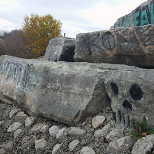 """""""The skull is a hidden gem within the Grand River Trail."""""""