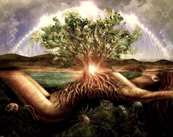 Image result for root woman earth