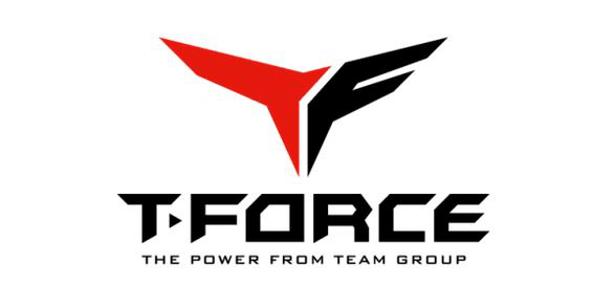 TeamForce logo