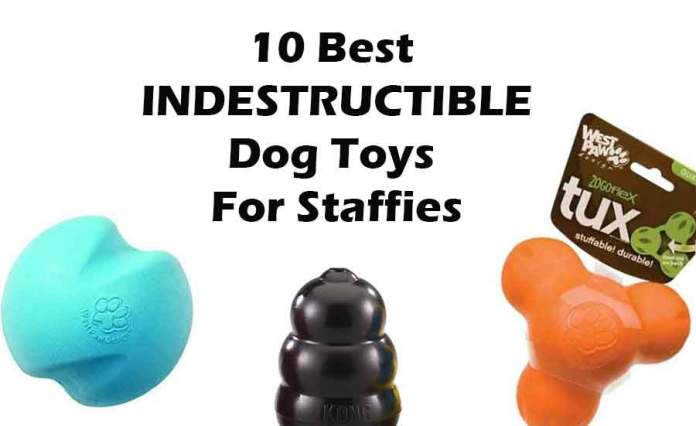 Staffy Dog Toys