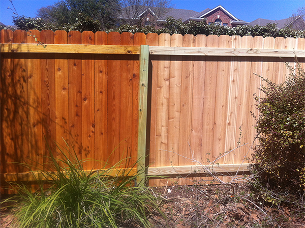 Fence Staining Gone Right!