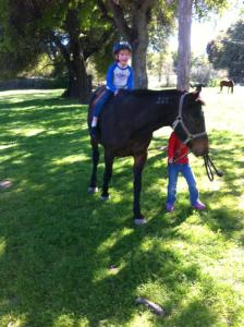 Young autistic rider takes Tricky for a ride.