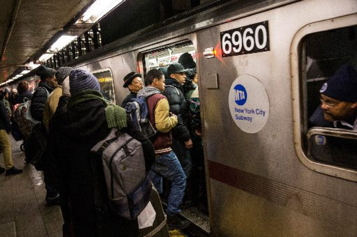 More Than 15 000 Species Found In The Nyc Subway The Star