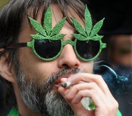 Image result for pics of marijuana problems in ontario