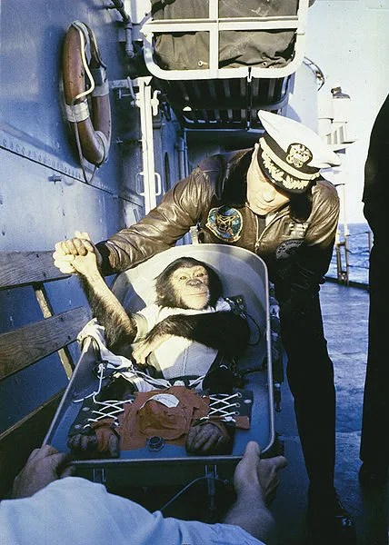 "The famous ""hand shake"" welcome. Chimpanzee Ham is greeted by recovery ship Commander after his flight on the Mercury Redstone rocket."
