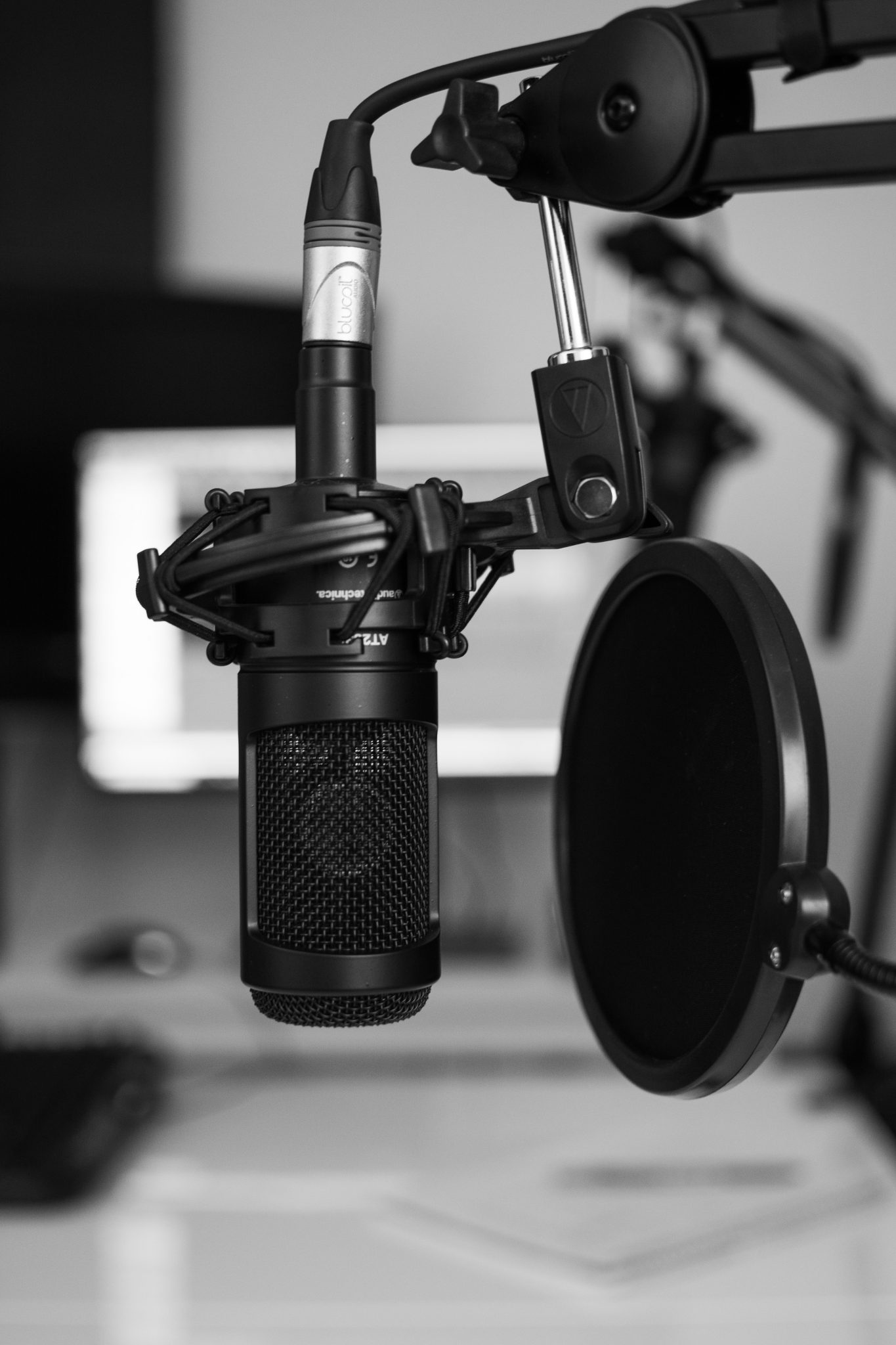 Looking for The Best Voice Maker Software in 2021? Check This Company