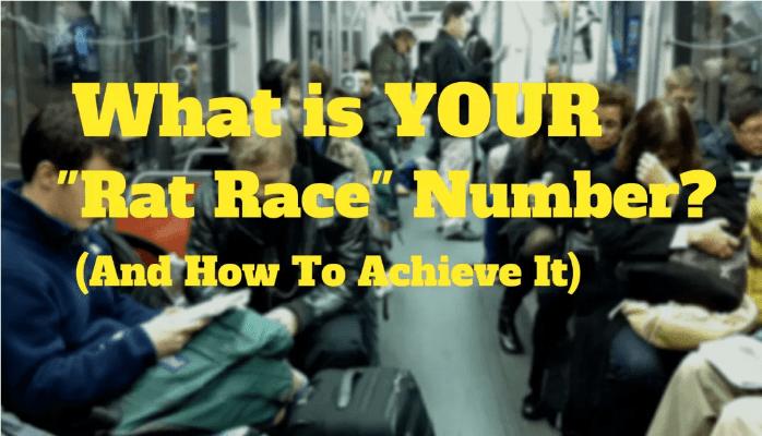 Startup Rat Race