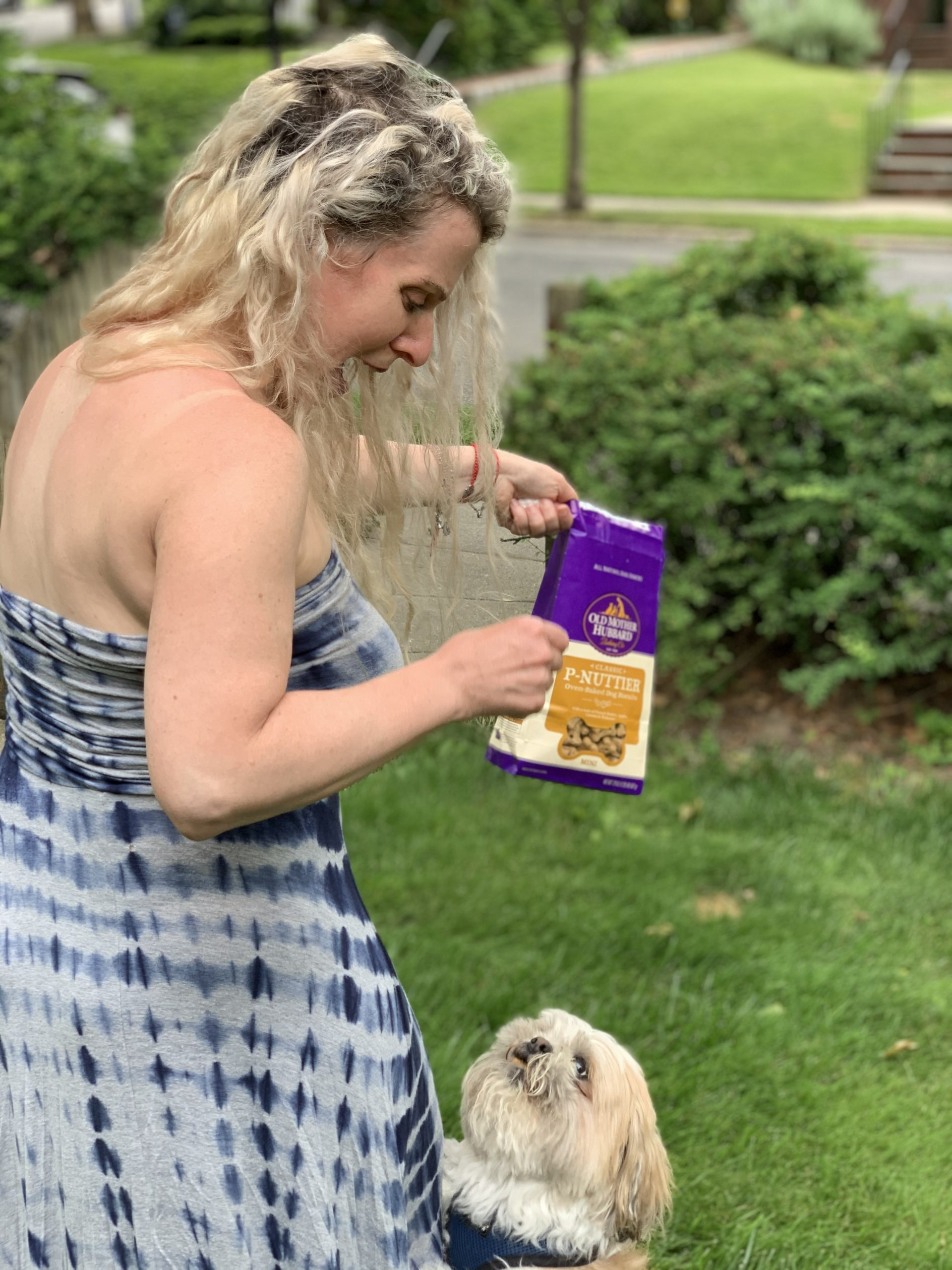 Tips to Help your Dog Live their Best Life!
