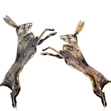 Boxing Hares Card by Julie Steel