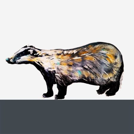 The Steel Rooms Badger Colour Band Card