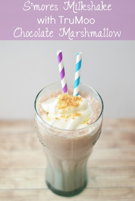 S'mores Milkshare with TruMoo Chocolate Marshmallow Milk | www.thestitchinmommy.com #sponsored #TruMoo #ChocolateMarshmallow #Smores #recipe