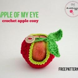 Apple of My Eye Crochet Apple Cozy - Free Pattern | www.thestitchinmommy.com