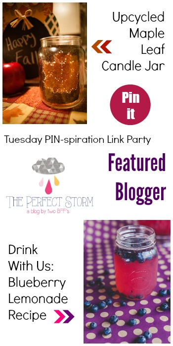 Tuesday PIN-spiration Link Party Featured Blogger - The Perfect Storm BBFs | www.thestitchinmommy.com