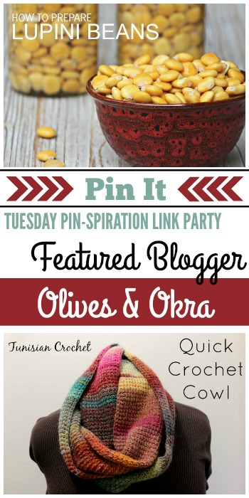 Tuesday PIN-spiration Link Party Featured Blogger - Olives & Okra | www.thestitchinmommy.com