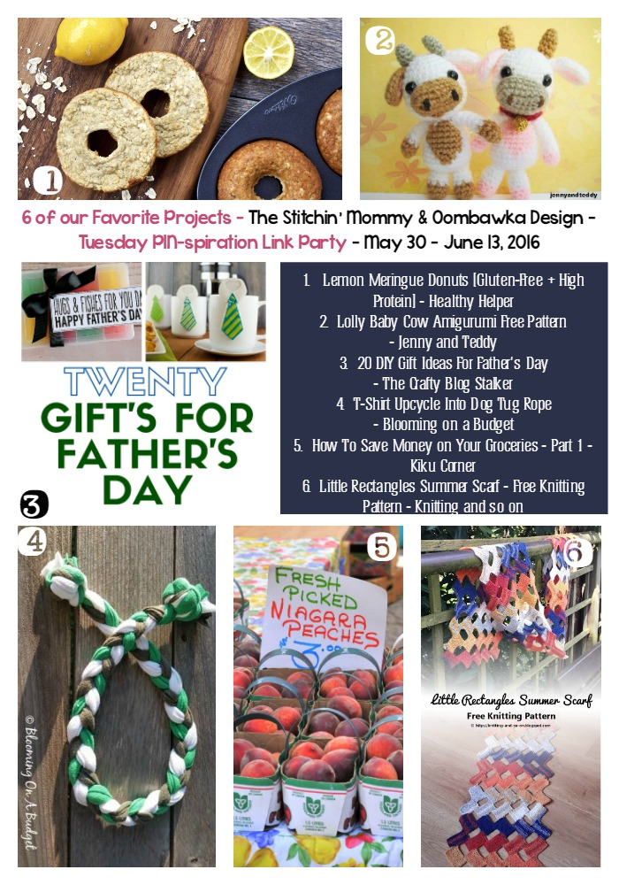 The NEW Tuesday PIN-spiration Link Party Week 6 (6/13/2016) - Rhondda and Amy's Favorite Projects | www.thestitchinmommy.com