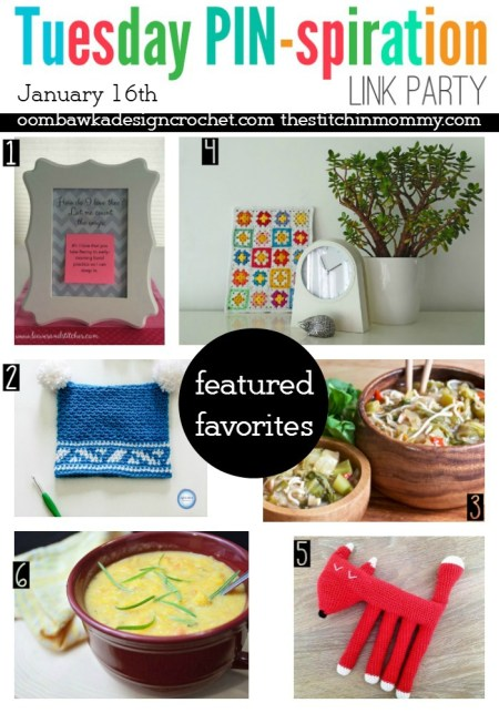 The NEW Tuesday PIN-spiration Link Party Week 20 (1/16/2017) - Rhondda and Amy's Favorite Projects | www.thestitchinmommy.com