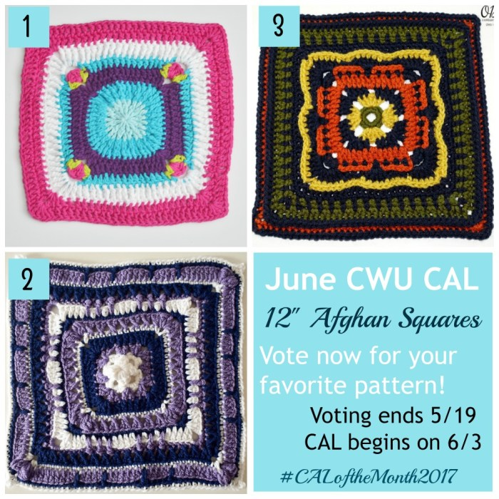 June CWU CAL of the Month - 12 Inch Afghan Squares - Vote now! | www.thestitchinmommy.com