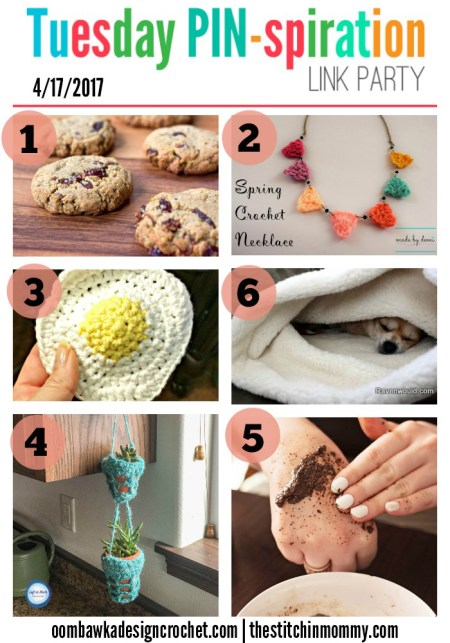 The NEW Tuesday PIN-spiration Link Party Week 33 (4/17/2017) - Rhondda and Amy's Favorite Projects | www.thestitchinmommy.com