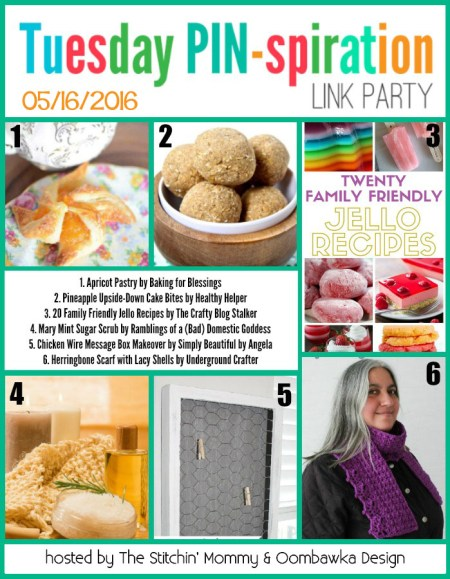 The NEW Tuesday PIN-spiration Link Party Week 4 (5/16/2016) - Rhondda and Amy's Favorite Projects | www.thestitchinmommy.com