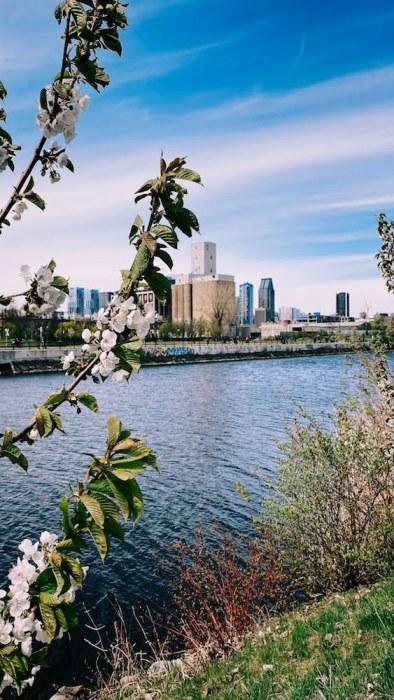 Canal_Lachine_Montréal
