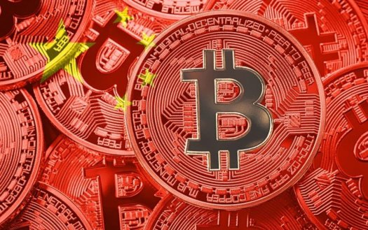 One Word From Elon Musk Makes Bitcoin Go Bonkers: '# ...