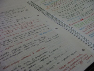 Well set out study notes