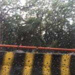 puzzle rains