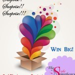 The Style Symphony Blogiversary Contest