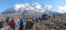 Mt. Kilimanjaro: Tips & Tricks for Climbing & Summiting