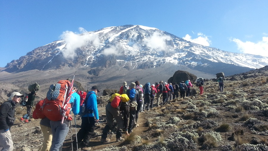 Mt. kilimanjaro climbing