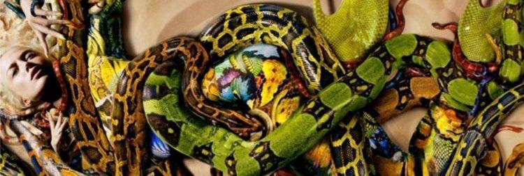 snake-fashion