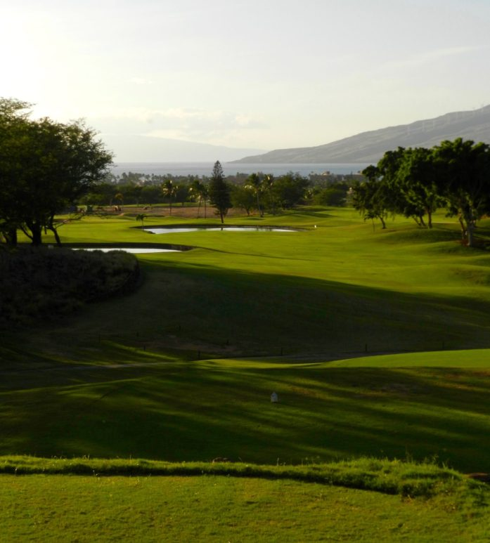 Double Water Hazard at Maui Nui Golf Course