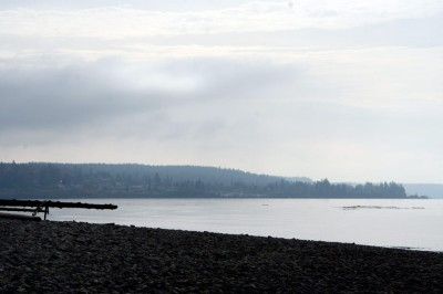 A view of Steilacoom, to the south from the soon to be accessible beach in front of Chambers Bay Golf Course.