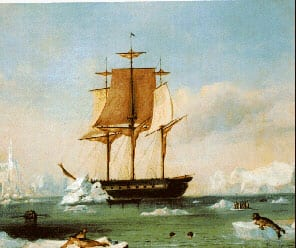 Wilkes' Ship- USS Vincennes