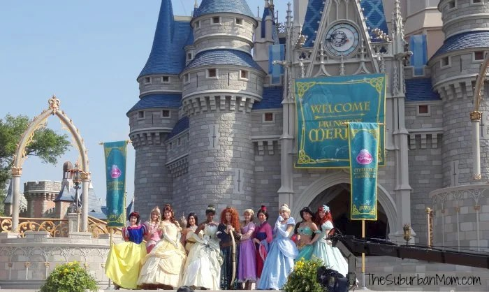 Disney Princess Castle Snow White Aurora Belle Pocahontas Tiana Merida Rapunzel Mulan Cinderella Jasmine Ariel