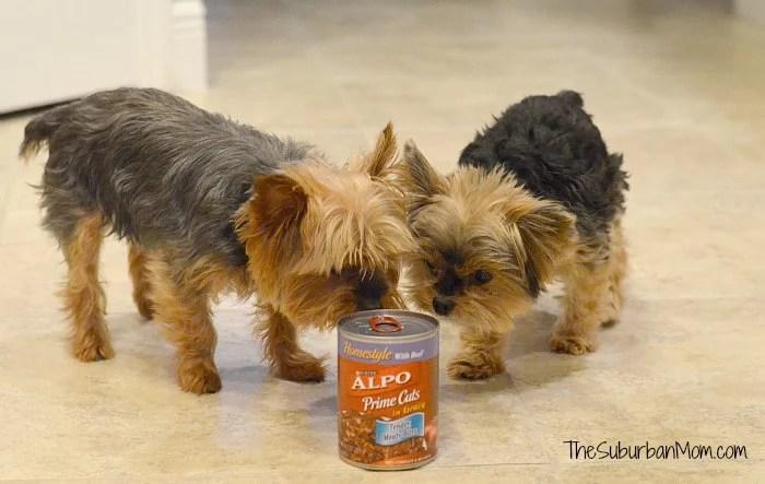 Alpo Dog