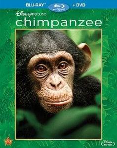disneynature-chimpanzee