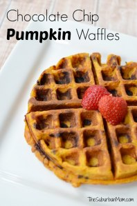 Chocolate Chip Pumpkin Waffle Recipe