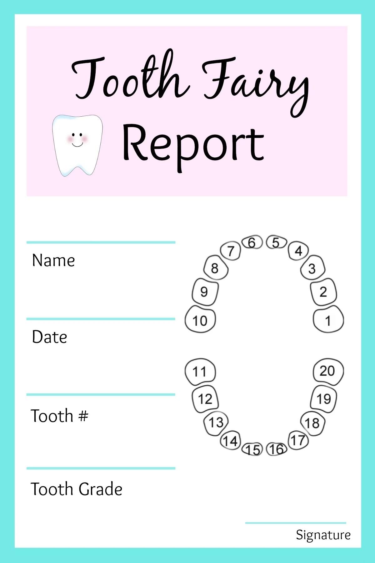 Tooth Fairy Report 1 200 1 800 Pixels