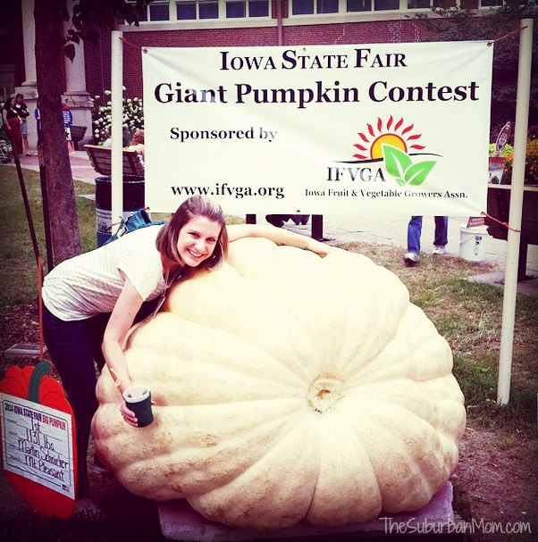 Iowa State Fair Pumpkin