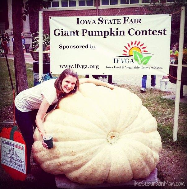 Iowa State Fair Pumpkin