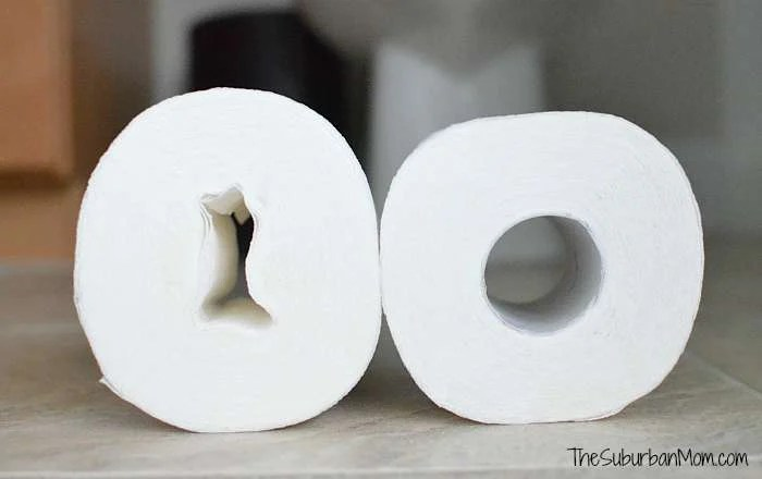 Toilet Paper Roll No Tube